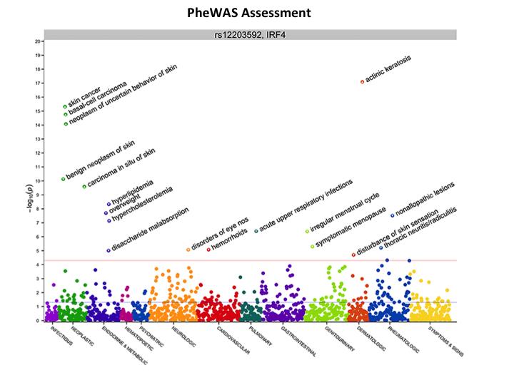 PheWAS_0.png